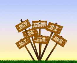 What is the role of domain names for your business?